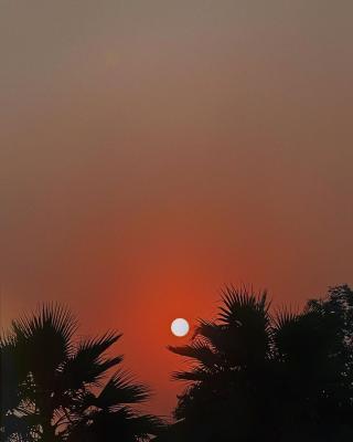รูปล่าสุด IG ปลายฟ้า อรนุช อุ่นสวัสดิ์